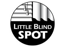 Petite tache aveugle